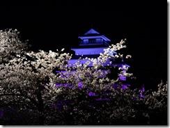2019年(平成30年)4月18日 夜桜に映える鶴ヶ城  No,2