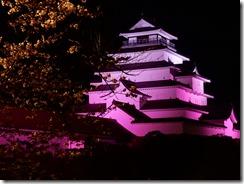 2019年(平成30年)4月18日 夜桜に映える鶴ヶ城  No,3