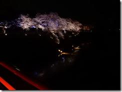 2019年(平成30年)4月18日 水面に映る夜桜  No,1