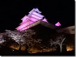 2019年(平成30年)4月18日 夜桜に映える鶴ヶ城  No,5